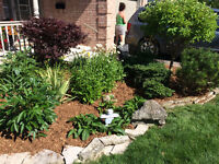 Tired of paying expensive rates for gardening work?
