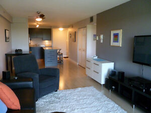 Fully-Furnished One Bedroom Suite for Rent in City Park