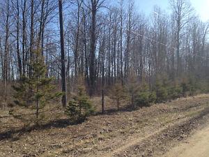 Terrain à vendre avec vue sur la rivière des Outaouais