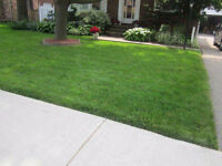 Pristine Landscaping - Top Quality 100% Kentucky bluegrass
