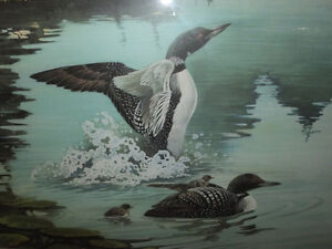 LIMITED EDITION LOON PRINT- REDUCED PRICE London Ontario image 3
