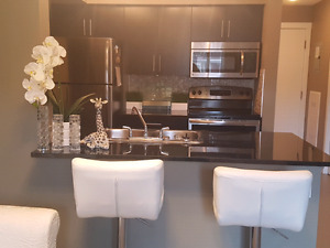 Furnished condo! daily/weekly/monthly