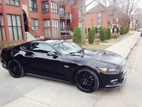 2015 Ford Mustang GT 5.0 Coupe (2 door)
