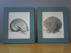 TWO SEASHELL PRINT PICTURES
