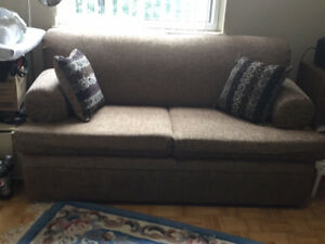 Double size pull out couch.