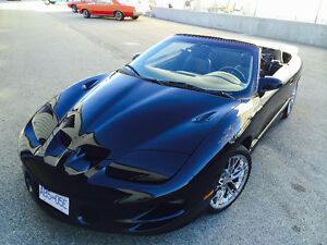 2002 Firehawk Trans Am Convertable
