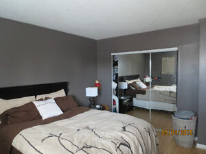 Triplex on Plateau Hull For Sale By Owner - Price reduced Gatineau Ottawa / Gatineau Area image 10