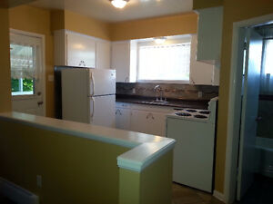 One bedroom appartement Downtown Bathurst