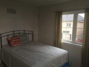 Room available for rent immediately $600.  in Brampton