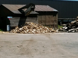Premium Firewood ( Competitive prices )