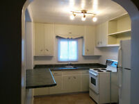 Large 1Bdr Apart.Available-the1 of August   in Downtown Trenton