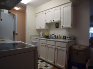 1 bedroom,1 bus ride UBC, pet friendly, new washer and dryer