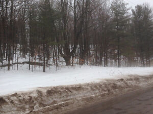 Rent to Own - Reverse Ravine Treed Building Lot