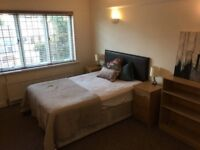 Stunning large TWO Double Rooms available for Quick move / RADLETT - £140 - £150 / WEEK