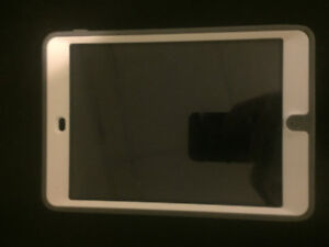 iPad mini 2 16GB mint condition with cases!