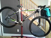 Cannondlae Flash 29er Carbon Team edition