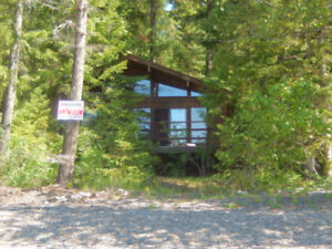 charming cabin on the Big Shuswap with 100 feet of waterfront