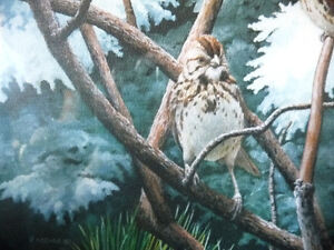 """Hand Signed, Numbered Lithograph by Peter Miehm """"Finches"""" 1981 Stratford Kitchener Area image 7"""