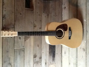 Norman B50 Acoustic with HSCase (On Hold)