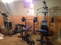 Home workout fitness equipment/gym.