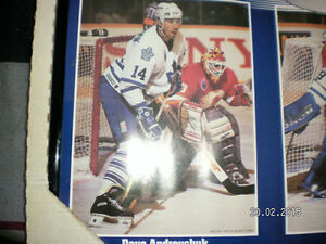 new but old MAPLE LEAF PICTURE EXCELLENT COND REDUCED Peterborough Peterborough Area image 2