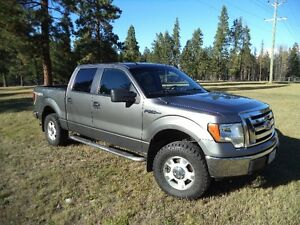 2010 Ford F-150 SuperCrew. Reliable, clean, needs nothing.