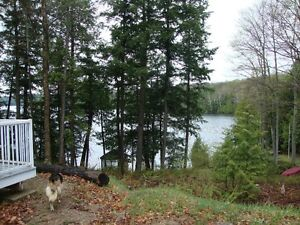 Grindstone Lake, waterfront lot