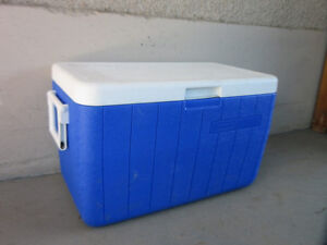 Coleman cooler for food storage when camping