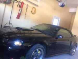 Mustang 2003 V8 GT CONVERTIBLE