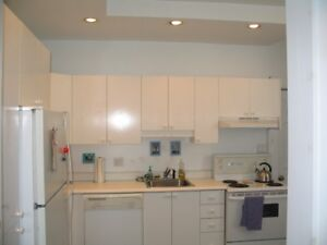 1 bedroom apartment main floor large storage space in basement.