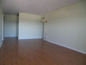 Spacious & Bright Waterloo Apartment! Pool & Utilities Included! Kitchener / Waterloo Kitchener Area image 3