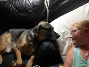 Loving Home-Style Boarding & Pet Care Services from a Vet Tech