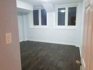 Brand new 4 Bedrooms basement apartment for female  tenent  only