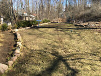 Spring Yard Cleanup & Removal