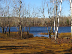 270-FT OF WATER FRONTAGE ON THE SALMON RIVER, CHIPMAN (Lot 10-9)
