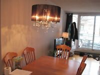 Plateau Mont-Royal , 3 1/2, STYLE CONDO,  $825.00
