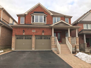 Rent/Lease 4BR Detached House In Oshawa North Taunton