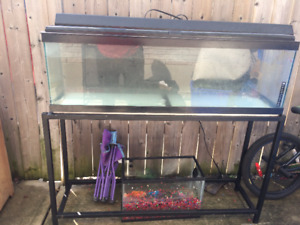 Tank and stand with light and aqua filter