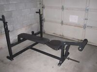 Decline Incline FlaT Bench gym weights exercise
