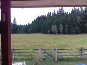 12.5 acres surrounded by Crown Land Williams Lake Cariboo Area image 4