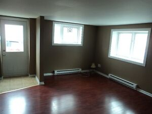 Two Bedroom Apartment + Den - Downtown