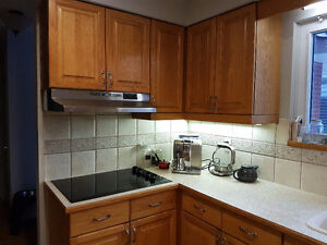 Kitchen Cabinets + Countertops