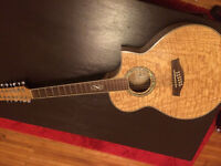 Ibanez 12-String - Sale or Trade