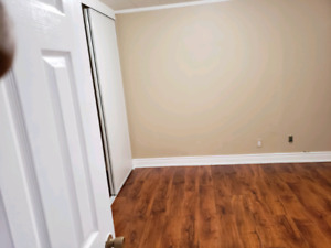 Room for Rent in Basement Apartment (No Parking)