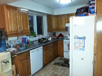 Full Kitchen - cabinets and countertop for your cottage/rental