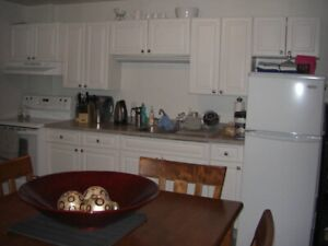Beautiful 1 Bedroom Apt. in Millidgeville $800- Available May 1