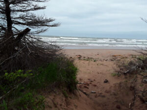 Stanhope PEI 2 bedroom Cottage Next to National Park Beaches