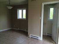 Newly Renovated 3 Bedroom DUPLEX in Dieppe** everything included