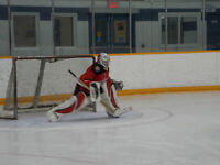 Shinny hockey this Sunday, March 26th - players needed
