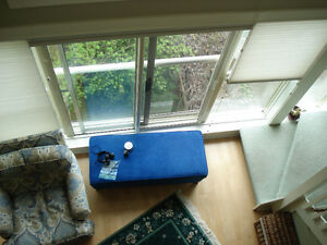 Bright furnished loft, edge of downtown, mid-March/April only